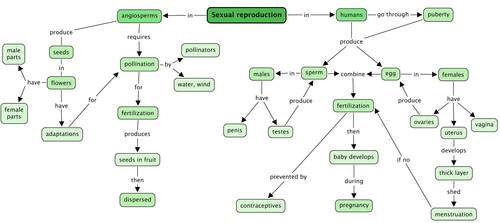 Reproductive System Concept Map.Natural Sciences Grade 7