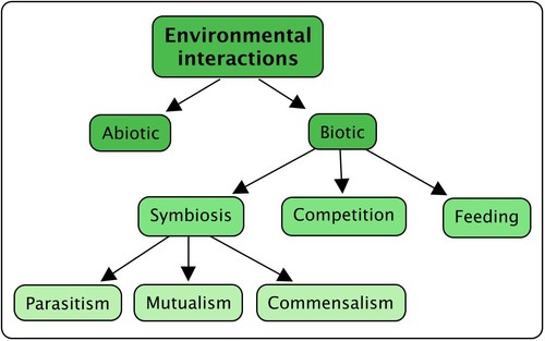 5 ecological relationship among organisms in the desert