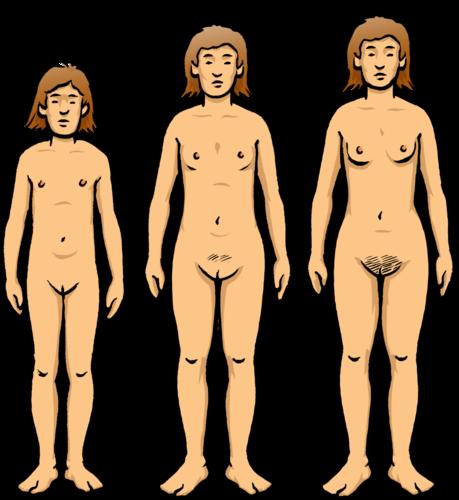 Naked boy physical reproduction body exam 9